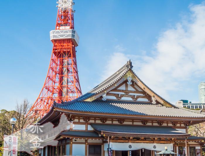 東京タワーを従えた安国殿