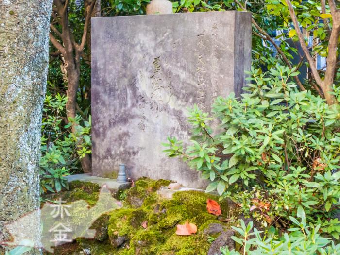 東光山定泉寺