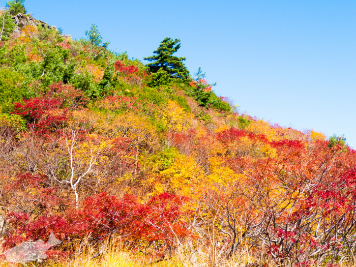 201410iwate-68