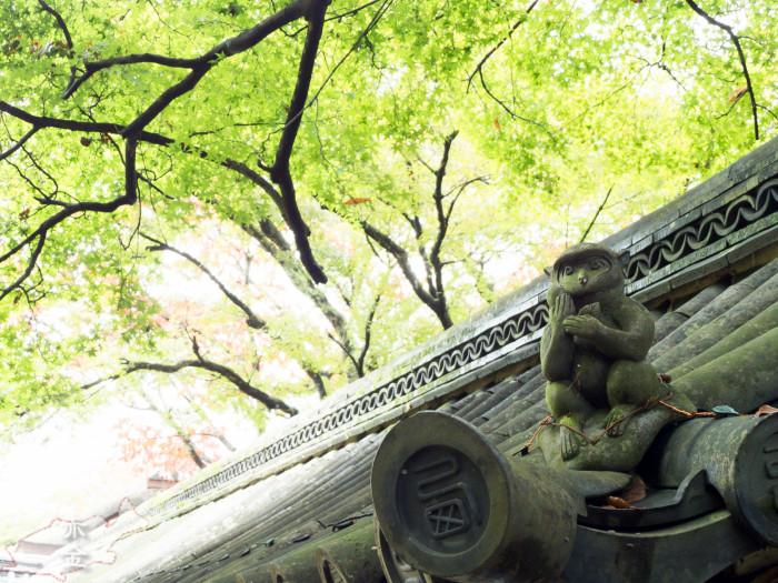 瓦の上のお猿さん。明るめに仕上げました