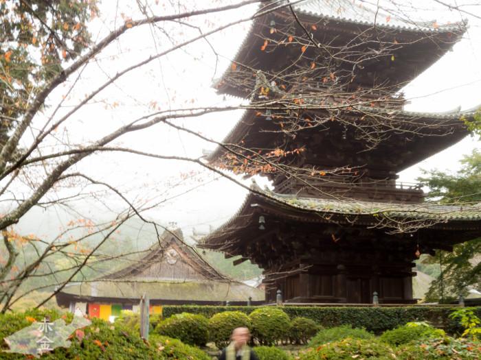 唐院三重の塔。重要文化財。