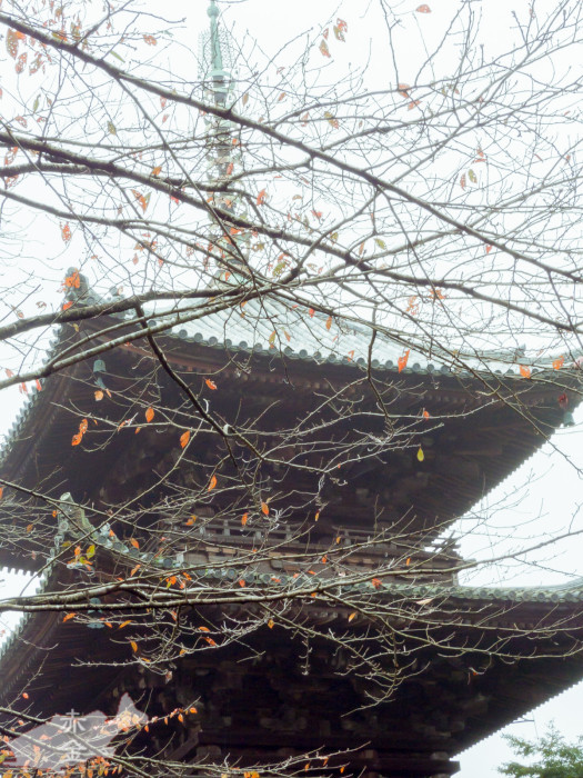 唐院三重の塔は、徳川家康によってこの地に移築された。重要文化財