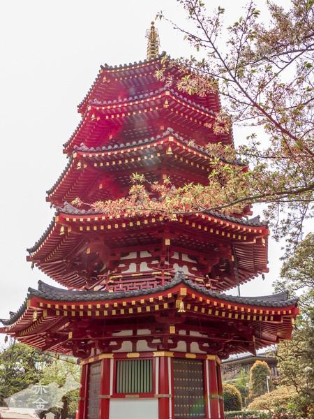 八角五重塔、両界曼荼羅などが奉安されている
