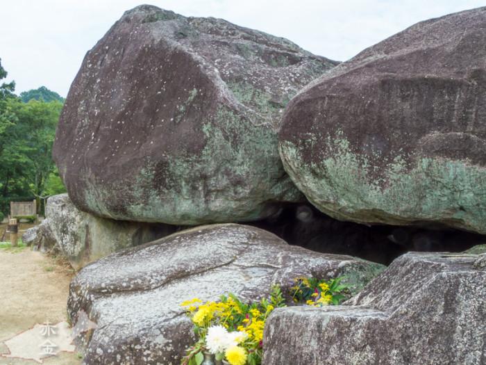 花と石の大きさの対比を出したかったのですが、全然出ていない。レンズのチョイスが悪いのか?