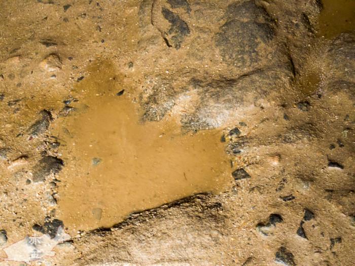 棺室の床にハート形の水たまり♪