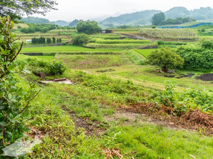 周囲ものどかな田舎の畑の風景