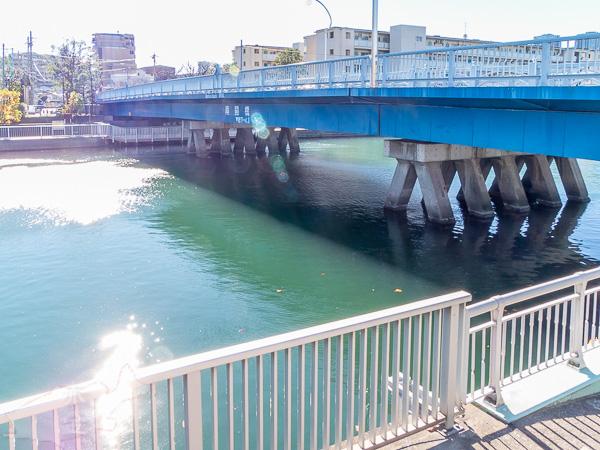下流側から南開橋を見る