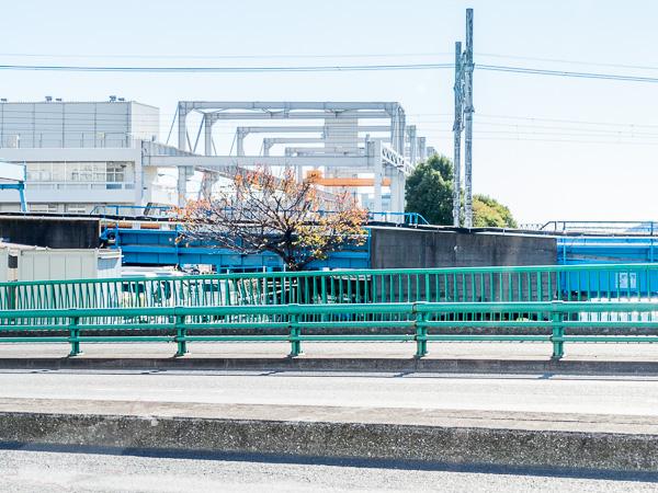新砂橋から下流方面を見る。線路は