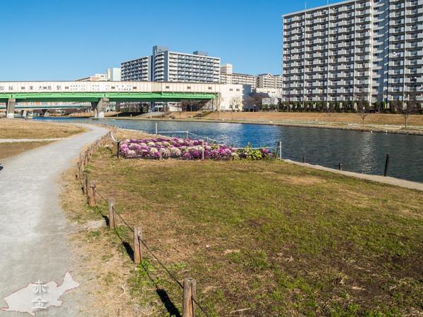 旧中川河川敷に下りて都営新宿線西大島駅を見