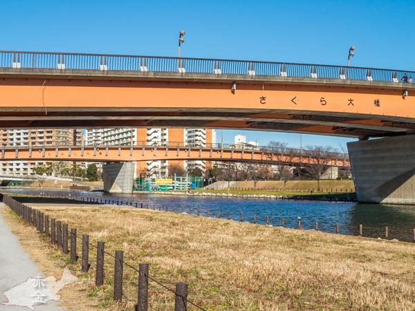 さくら大橋→もみじ大橋。旧中川をはさんで大